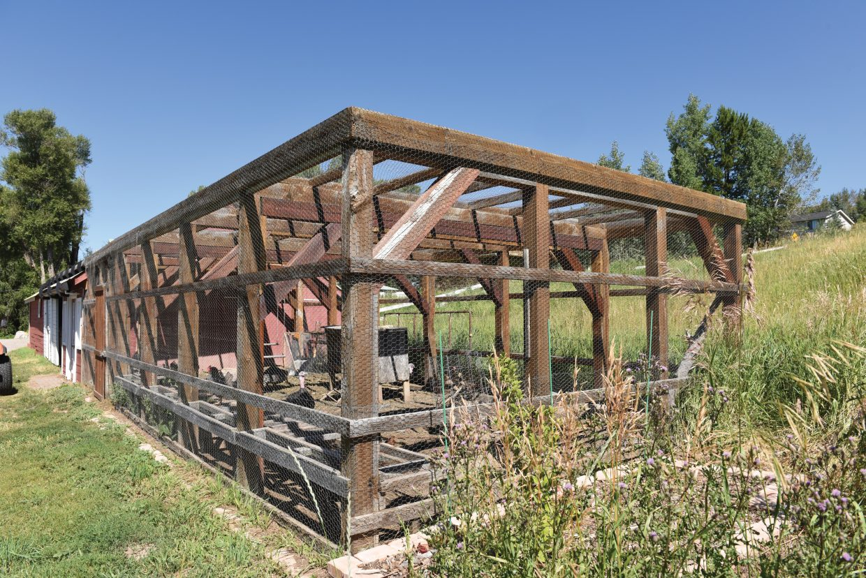 Harold Stout's chicken coop at 804 North Park Avenue. Walker's property will be part of this year's Yampa Valley Sustainability Council's Tour de Coop.