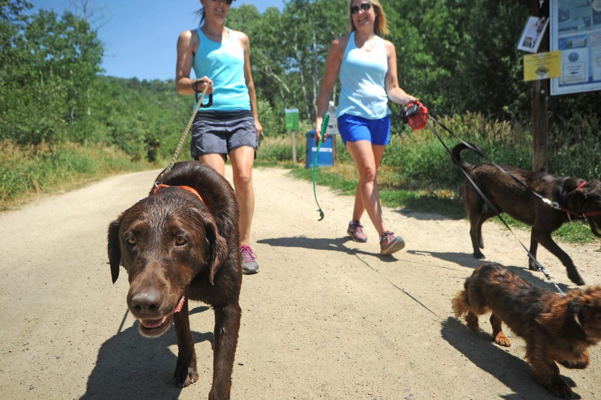 Duncan leads a walk on the Spring Creek Trail as his owner, Amy Norris, left, talks with Erin Levan.