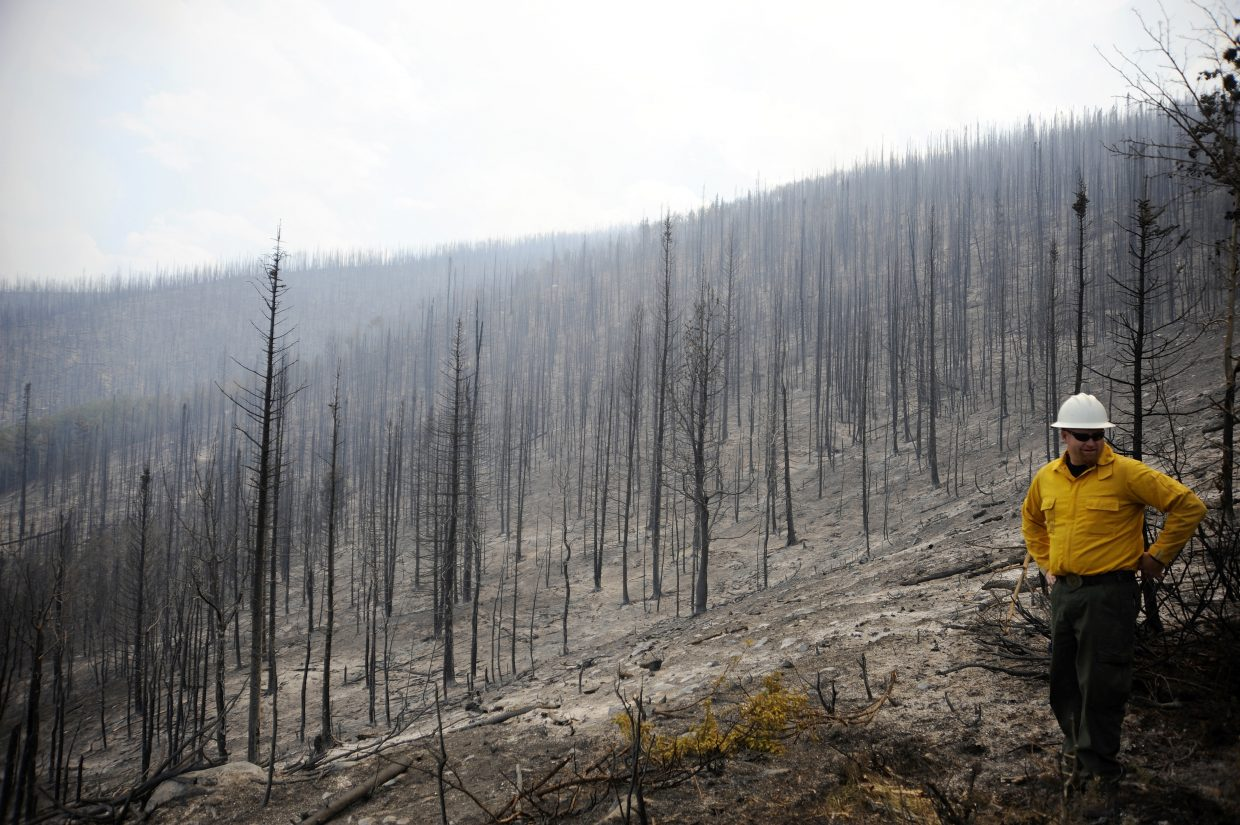 Steamboat Springs U.S. Forest Service District Ranger Chad Stewart surveys a hillside scorched by the Beaver Creek fire in 2016.