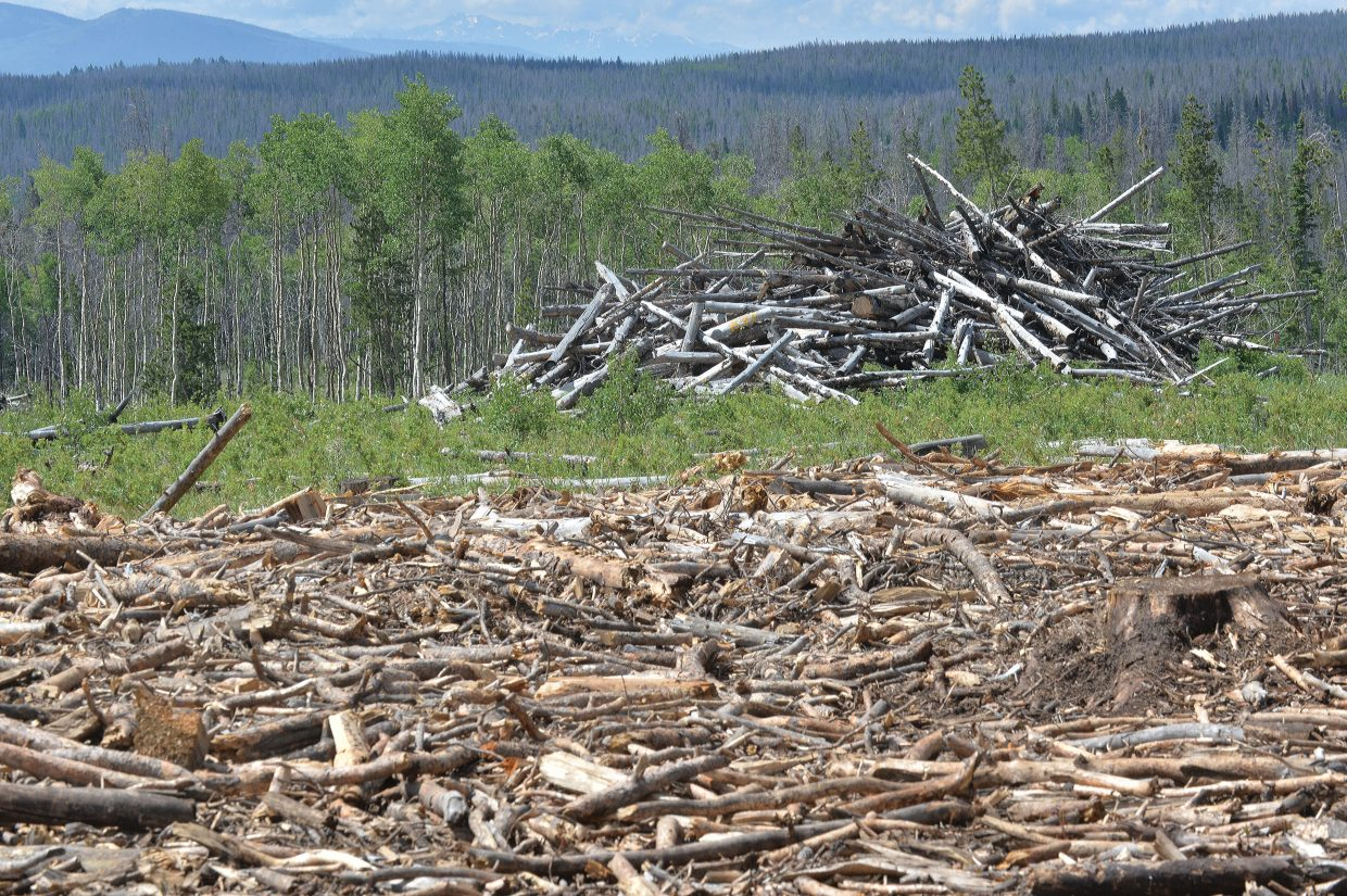 A slash pile waits for crews from Confluence Energy to start work. The material in the foreground is from a slash pile that was already chipped and trucked to a processing mill in Kremmling. The remaining material, which was too dirty to chip, will be pushed into a smaller pile and burned, or spread out to allow native growth to return to the area.