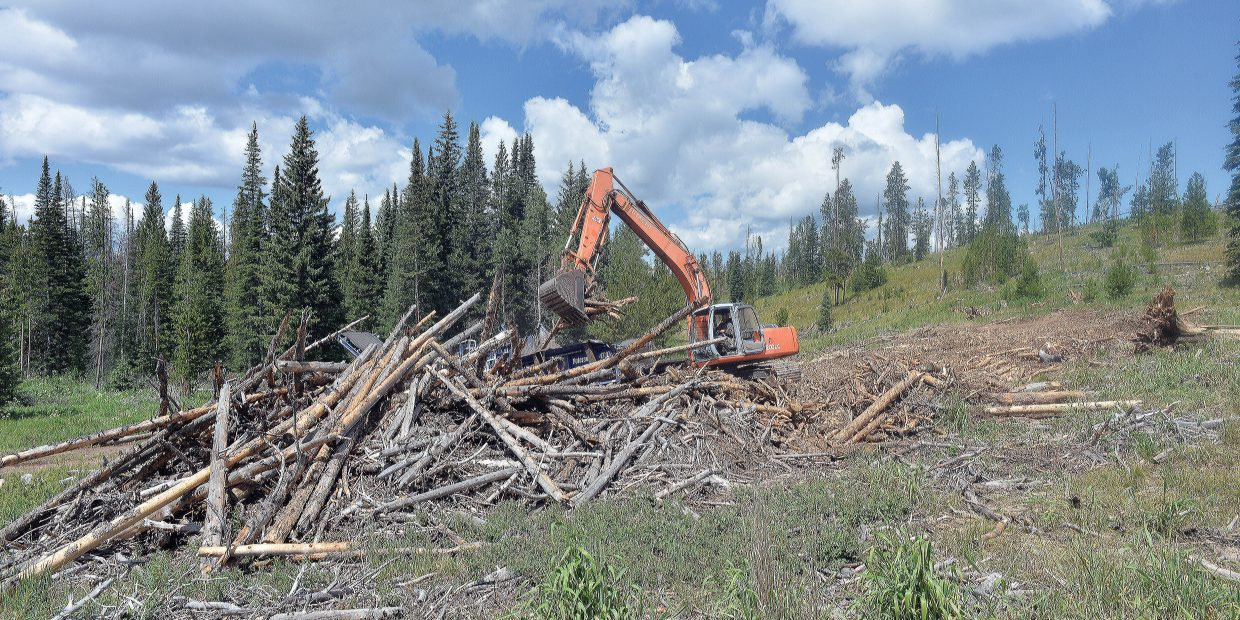 Ty Shearer, of Confluence Energy, uses an excavator to load timber into a chipper on Gore Pass.