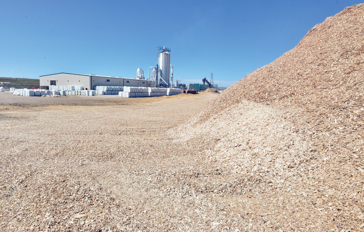 A mountain of wood chips waits to be processed at the Confluence Energy processing plant in Walden.