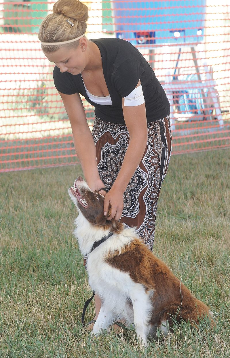 Jewel Vreeman rewards Carly for a job well done during the obedience portion of the Routt County Fair dog show on Tuesday. Carly gave birth to pups just two weeks ago but still managed to show up for the 100th annual Routt County Fair.