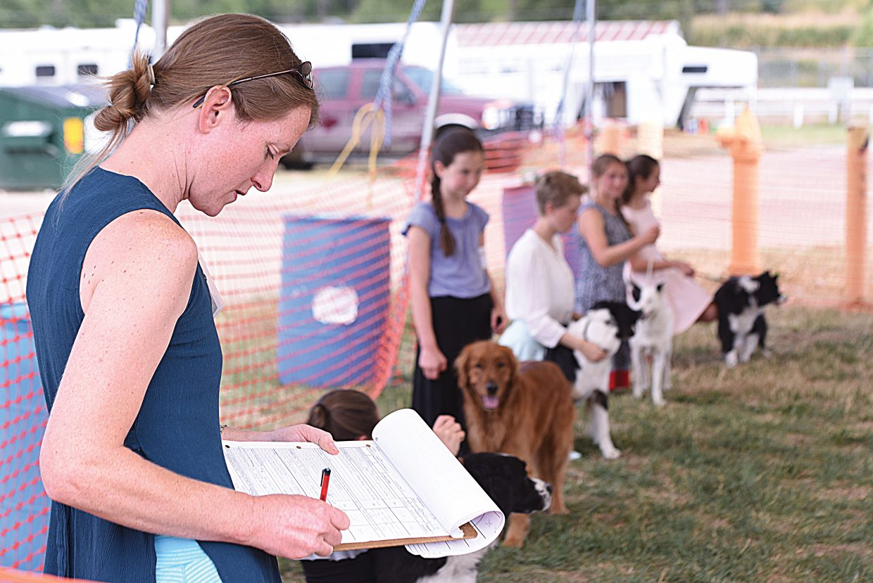 Judge Terena Thomas evaluates the dogs at this year's Routt County Fair Dog Show during the showmanship portion of the day.