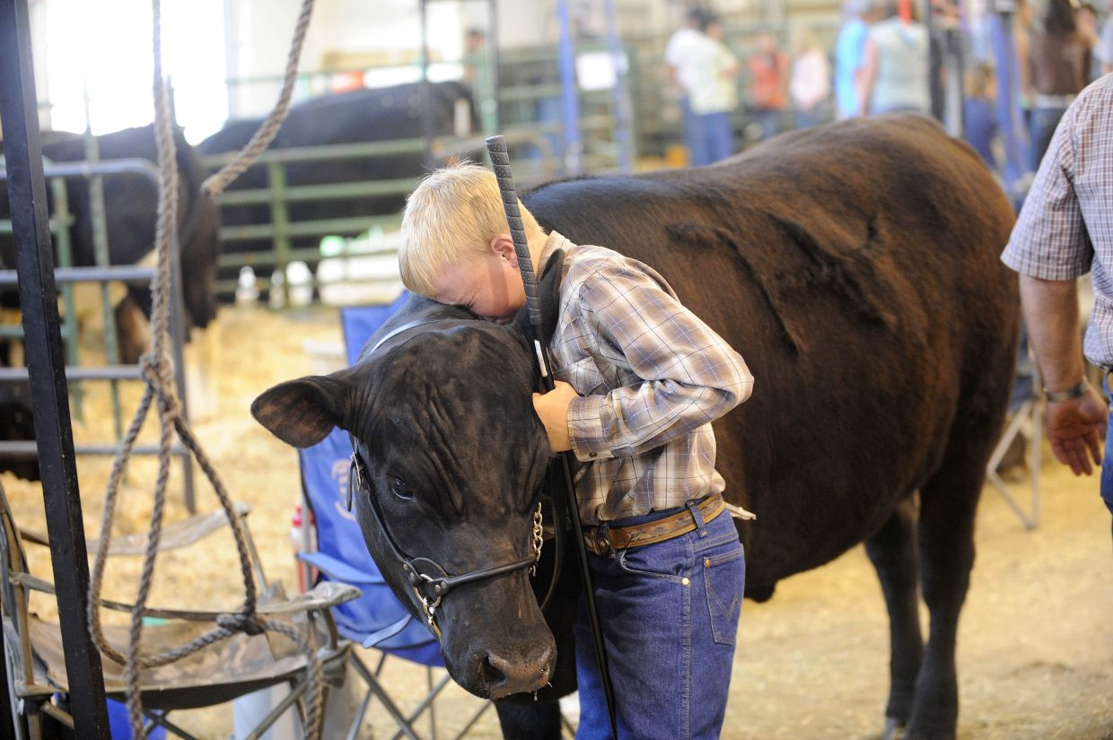 Tyler Boyer, 11, of Hayden, says goodbye to his steer Leonard after it was sold during the 2011 Junior Livestock Sale at the Routt County Fairgrounds. Steamboat Pilot & Today reporter and photographer Matt Stensland won Best in Show for this photo during the Colorado Press Association's annual Better Newspaper Awards banquet in 2012.
