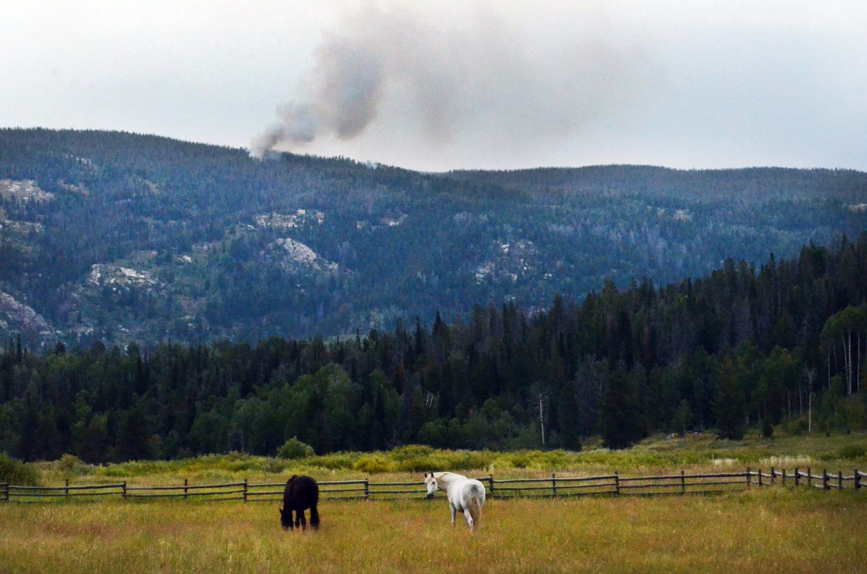 Horses graze in a field off Routt County Road 16 as a wildfire burns on a ridge in the Sarvis Creek Wilderness Area. Firefighters are monitoring the fire and plan to fight it if it leaves the wilderness.