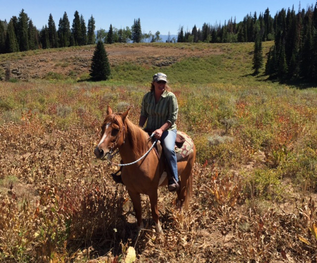 Sarah Rakowski on her dream horse, River, who went missing Aug. 20 after horse and rider took a tumble during a trail ride in a remote part of Routt County northwest of Steamboat Springs.