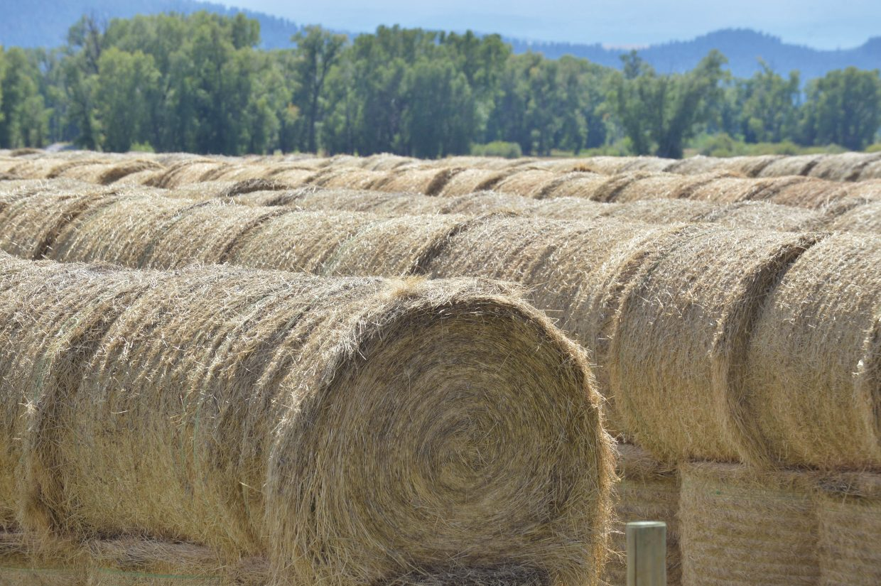 Hay is stacked and ready for winter at a ranch along Routt County Road 44 near Steamboat Springs.