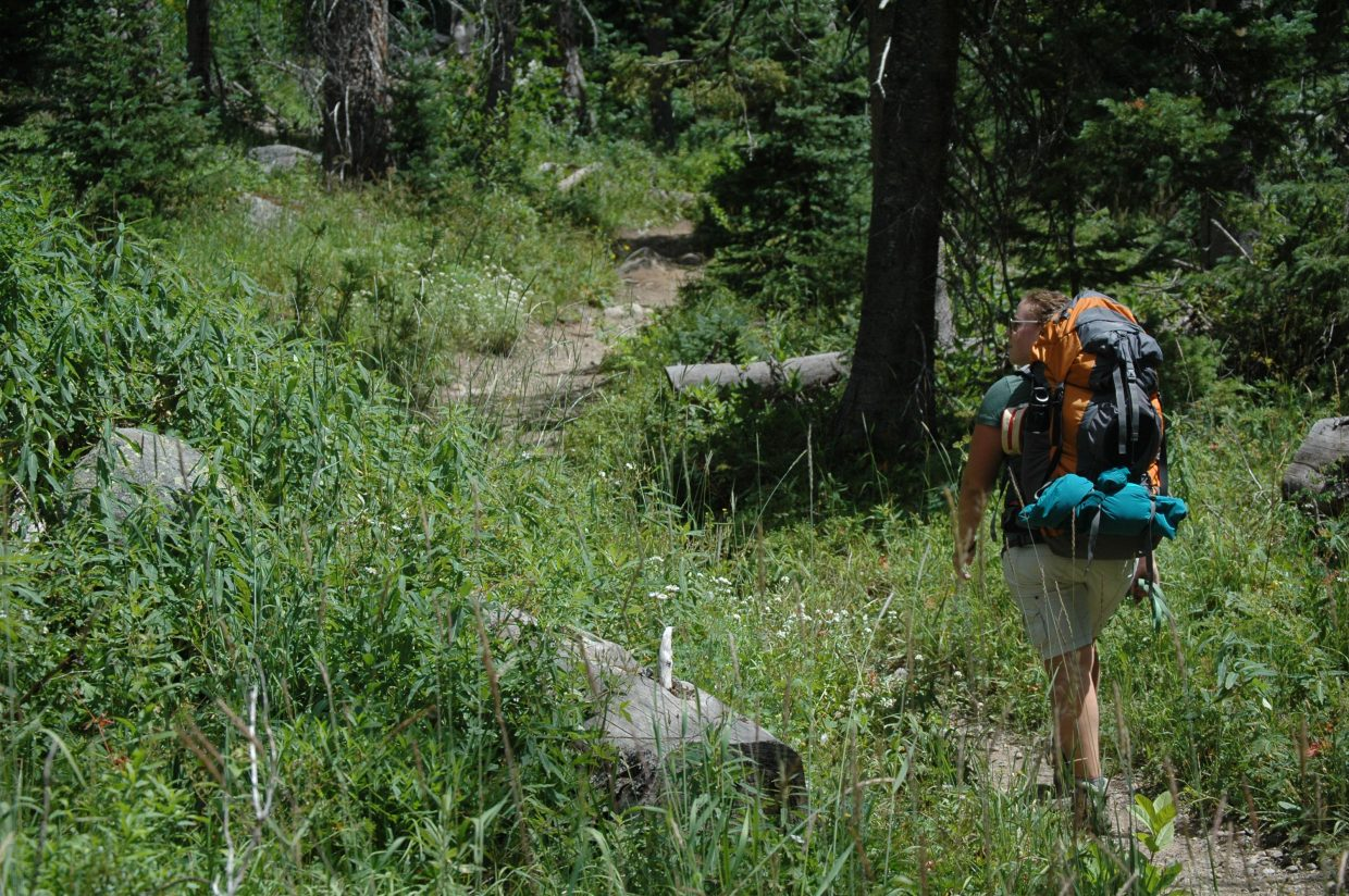 Laura Mazade walks through the Mount Zirkel Wilderness Area on the way to Gold Creek Lake in August.