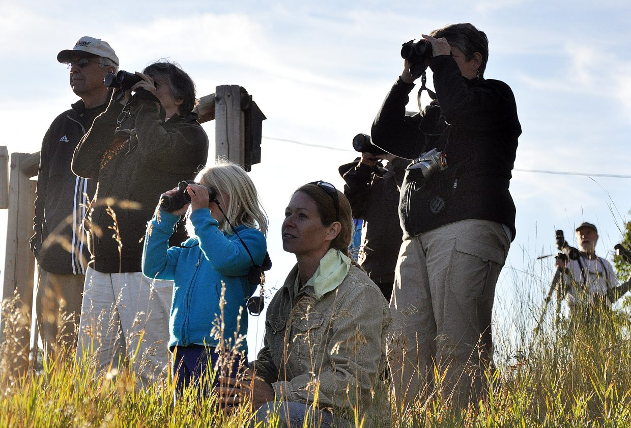 Birdwatchers watch sandhill cranes during the first Yampa Valley Crane Festival. This year's festival starts Thursday and goes through Monday this year.