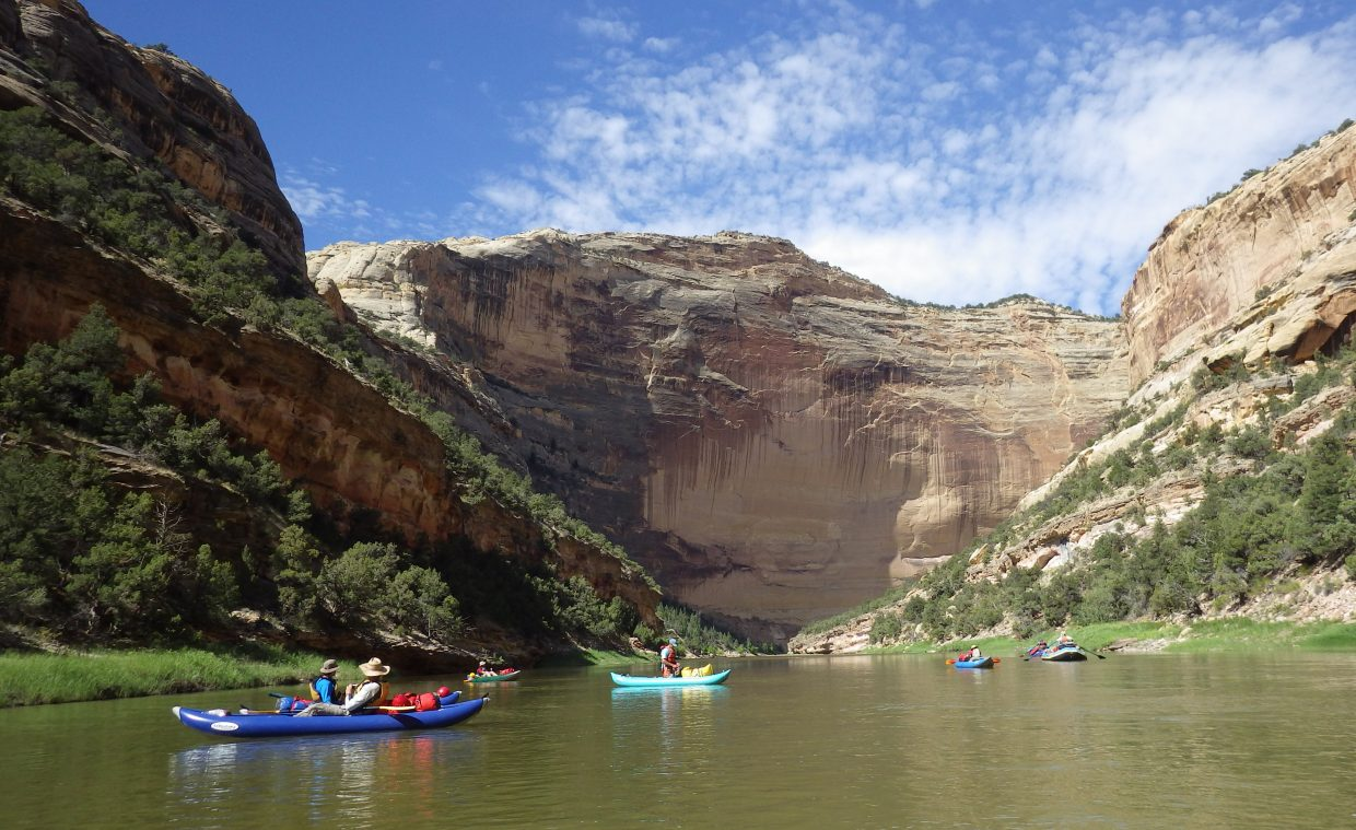 Colorado Parks and Wildlife biologists and volunteers float the Yampa River in Dinosaur National Monument in July during a count of the river otter population there. The survey found evidence of otters in every 5 kilometer search area from Deerlodge Park to Echo Park, suggesting the population is in good shape after successful reintroductions.