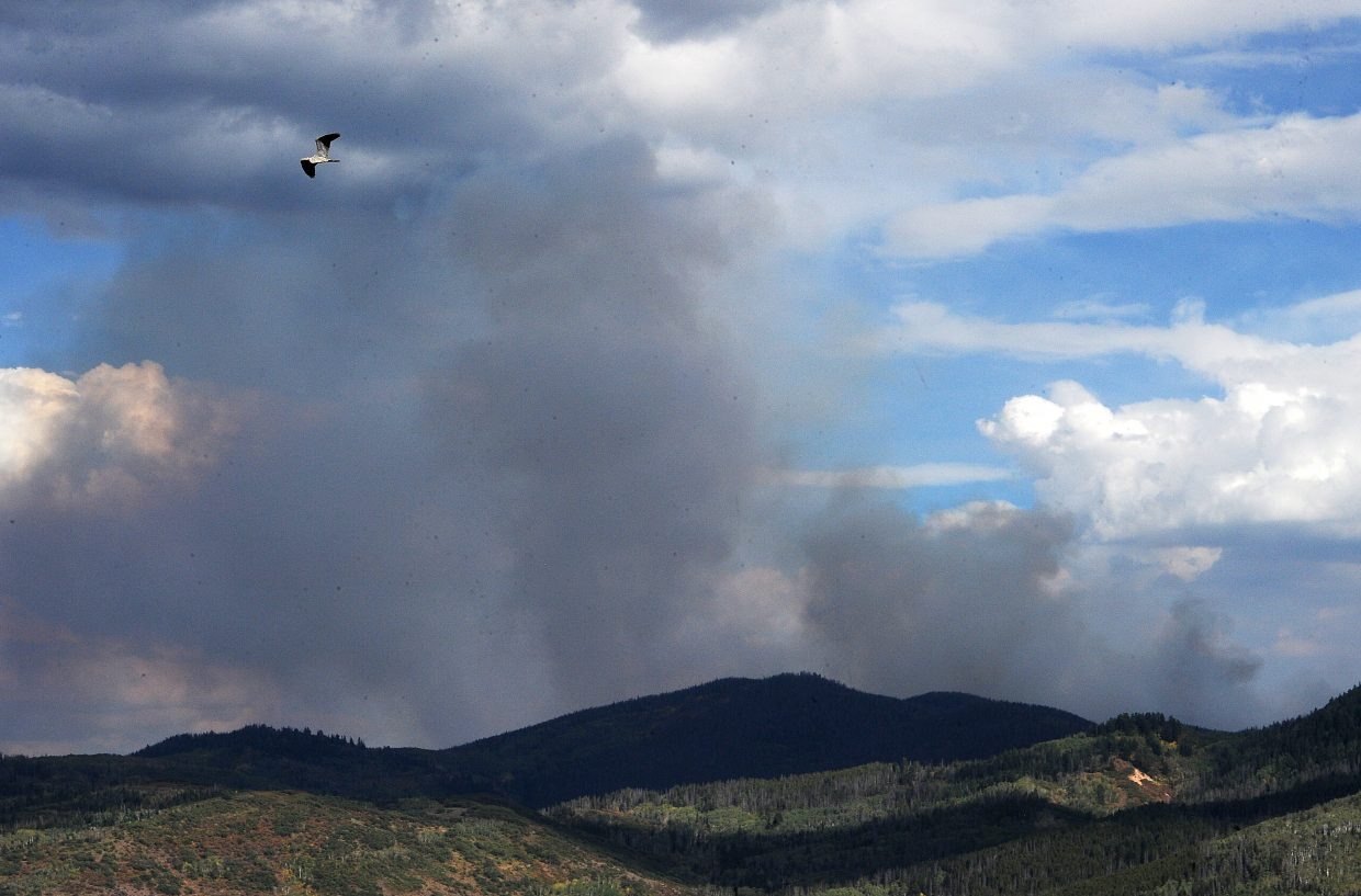 A great blue heron flies above Stagecoach Reservoir as the Silver Creek Fire billows smoke Sunday. Fueled by strong winds, the fire grew to 303 acres through the weekend.