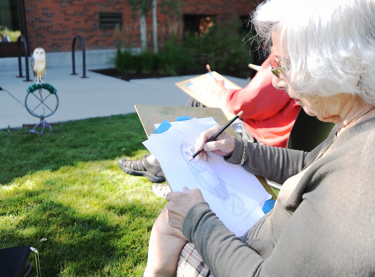 """Avian art: Odette Harding, from Salt Lake City, sketches as her subject, a barn owl, poses Sunday outside the Bud Werner Memorial Library in downtown Steamboat Springs. Harding was one of about 15 artists who took in the """"Sketch-a-bird"""" workshop, was a part of the Yampa Valley Crane Festival in Steamboat. Local artist Chula Beauregard taught the workshop, which included two live owls. Among her tips for aspiring artists: Don't get caught up in the details and instead focus on the bird's movements and posture."""