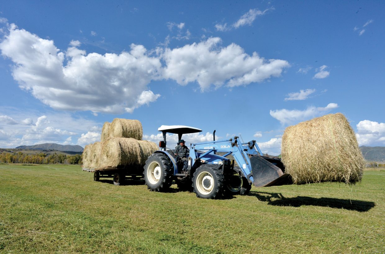 Steamboat Springs rancher Jim Stanko transports hay from his pastures just off of Routt County Road 33 to a storage area closer to his ranch house. Ranchers in the area are taking advantage of a recent string of days without rain to get their hay up and stored before fall weather arrives.