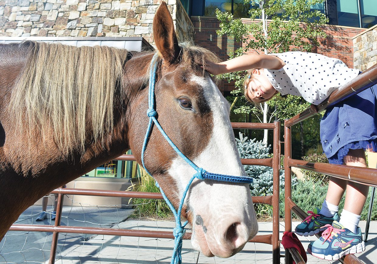 """Young Eva Minotto reaches out to pet Odakota, a mustang taken from the Sand Wash Basin outside of Craig, The horse was on display during a gathering at the Bud Werner Memorial Library Thursday afternoon. Odakota and owner Nancy Roberts came to the gathering to help the library promote """"American Mustang,"""" a documentary film that was shown at the library Thursday evening."""