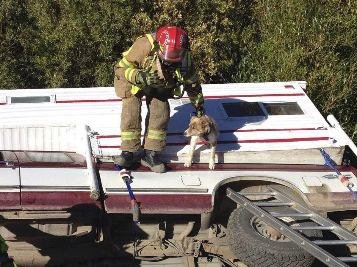 Yampa Fire Protection District firefighter Rob Anderson helps rescue a dog in September 2013.