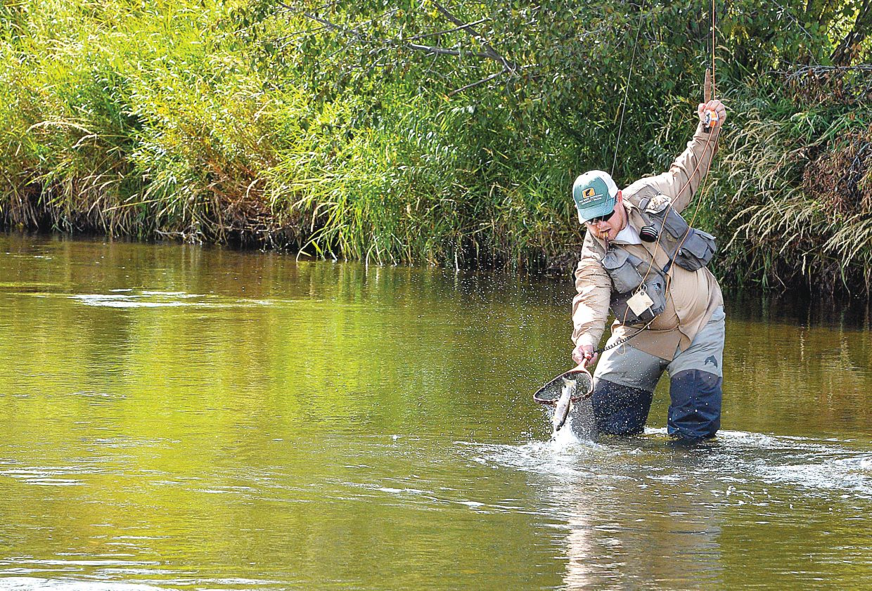 Dan Sprys, of Fort Collins, attempts to net a fish while fly fishing near the Chuck Lewis State Wildlife Area on Monday afternoon. Sprys met a group of friends who visit Steamboat Springs each year for a few days of fishing on the Yampa River.