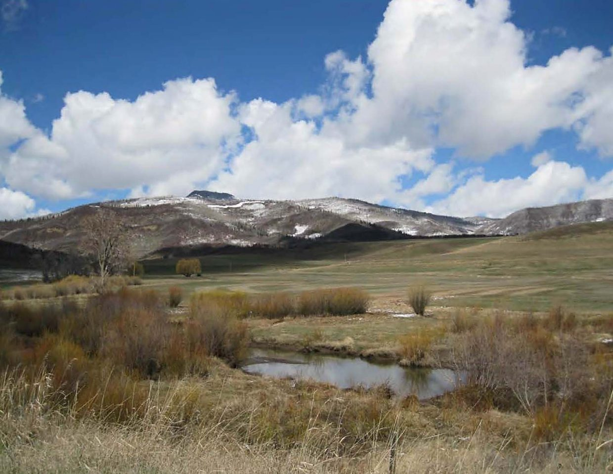 Deep Creek Meadows Ranch, in addition to productive hay meadows, is home to a nesting pair of sandhill cranes and is in close proximity to Columbian sharp-tailed and sage grouse breeding leks.