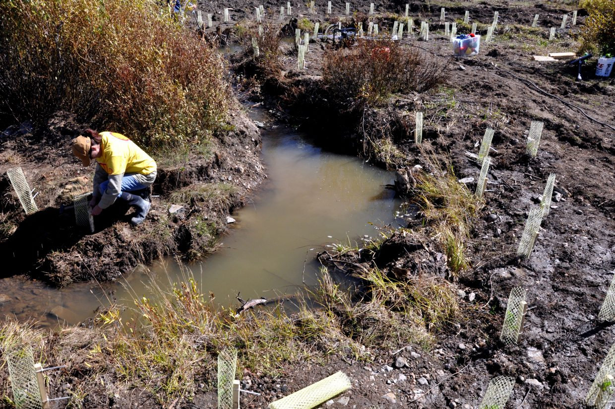 Teresa Hull works on a creek restoration project in California Park. The project has nine partners ranging from Shell Oil to local conservation groups.