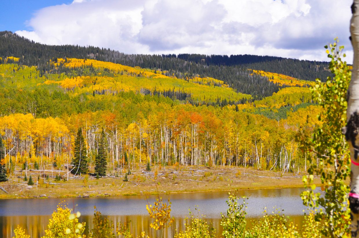 Sharyl Chapman took this colorful photo of Freeman Reservoir.