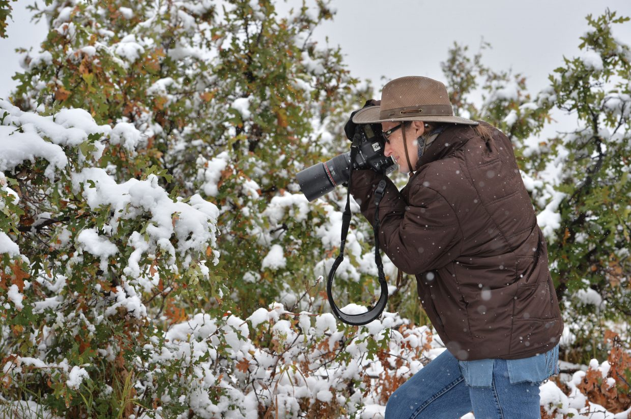 Florida-based photographer Maresa Pryor Luzier captures some images of the falling snow Wednesday afternoon near the top of Rabbit Ears Pass.