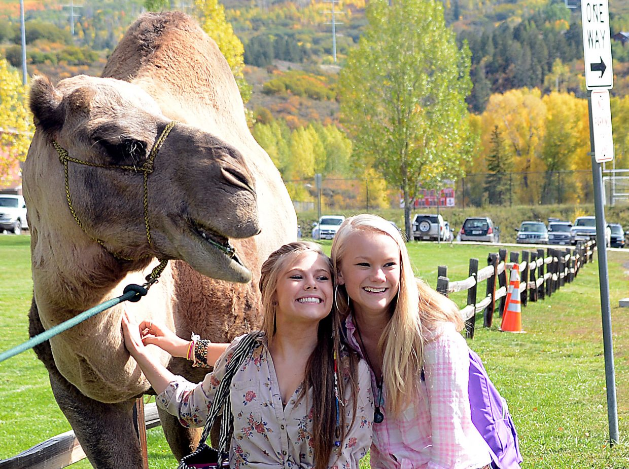 Larry the Camel hams it up for a photo with Steamboat Springs High School students Anna Henderson, left, and Samie Cretney on Wednesday, hump day, at the high school as part of homecoming week. Larry is owned by the Aurin family, and on Wednesday, Bethany Aurin drew the duty of guiding the animal, which prompted dozens of high school students to take photos.