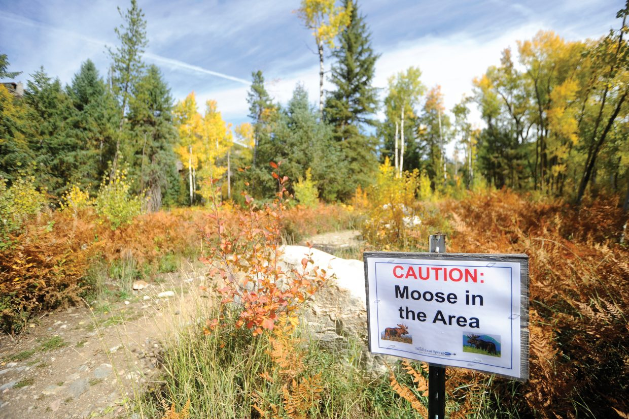 Signs are posted at the trailheads near the water treatment plant along Fish Creek that warn about a moose in the area.