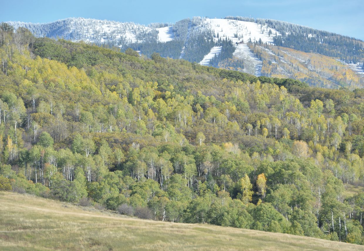 A fresh layer of snow lines the top of Steamboat Ski Area on Friday afternoon.