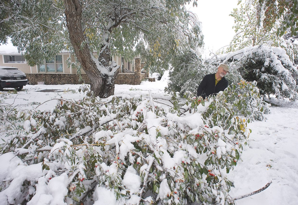 Von Wilson pulls a large tree branch from in front of his home on Seventh Street on Friday morning. The first major storm of the season brought several inches of heavy snow that took a toll on many trees in the area.