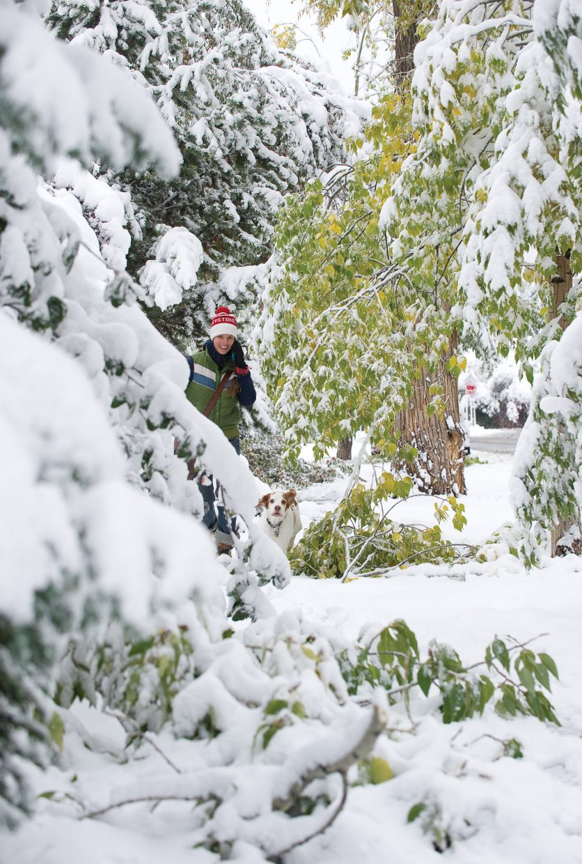 Allison Harris walks past downed trees Friday morning along Seventh Street in downtown Steamboat Springs. The first major storm of the season brought several inches of heavy snow that took its toll on many trees in the area.