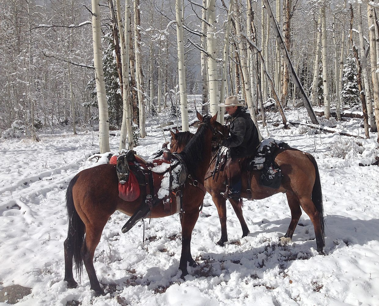 Sean Perkins, of Saddle Mountain Ranch, riding Jazz, gathers in a mare named Dolly on Oct. 27. Dolly had been missing since Sept. 20, when she unseated her rider while returning from a hunting trip in the area of Ditch Creek northwest of Steamboat Springs. The missing horse finally was located after she answered a loud whinny from Jazz.