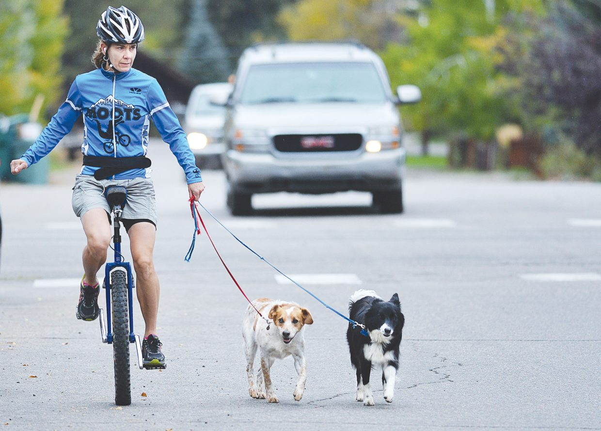 Ann Barbier rides her unicycle along Ninth Street with her dogs Red, left, and Olive Thursday morning.