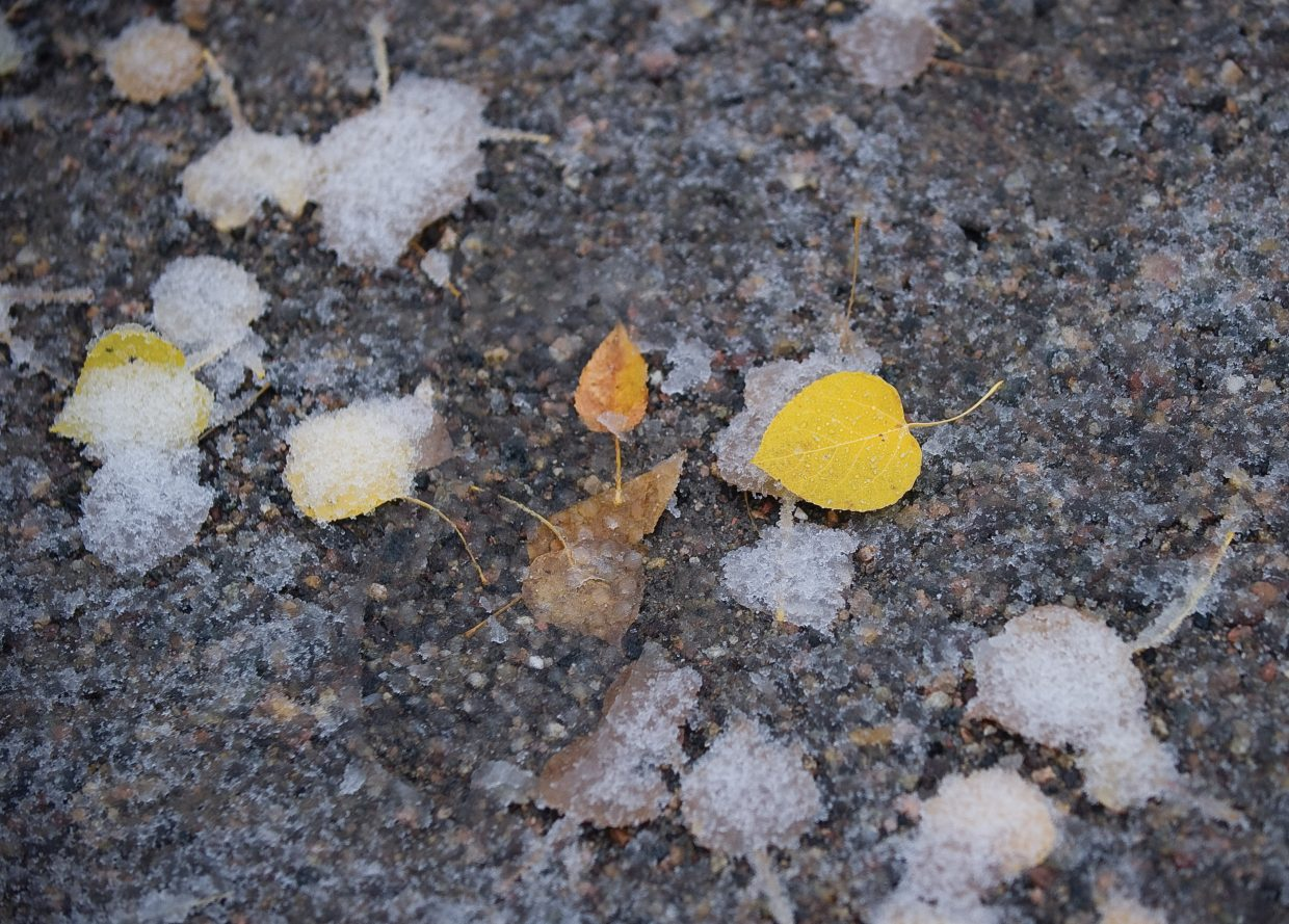 A fallen Aspen leaf sits on a walking path near Fish Creek on Friday morning. The latest storm began Thursday night with lower temperatures and rain, and by Friday morning, snow was falling at higher elevations.