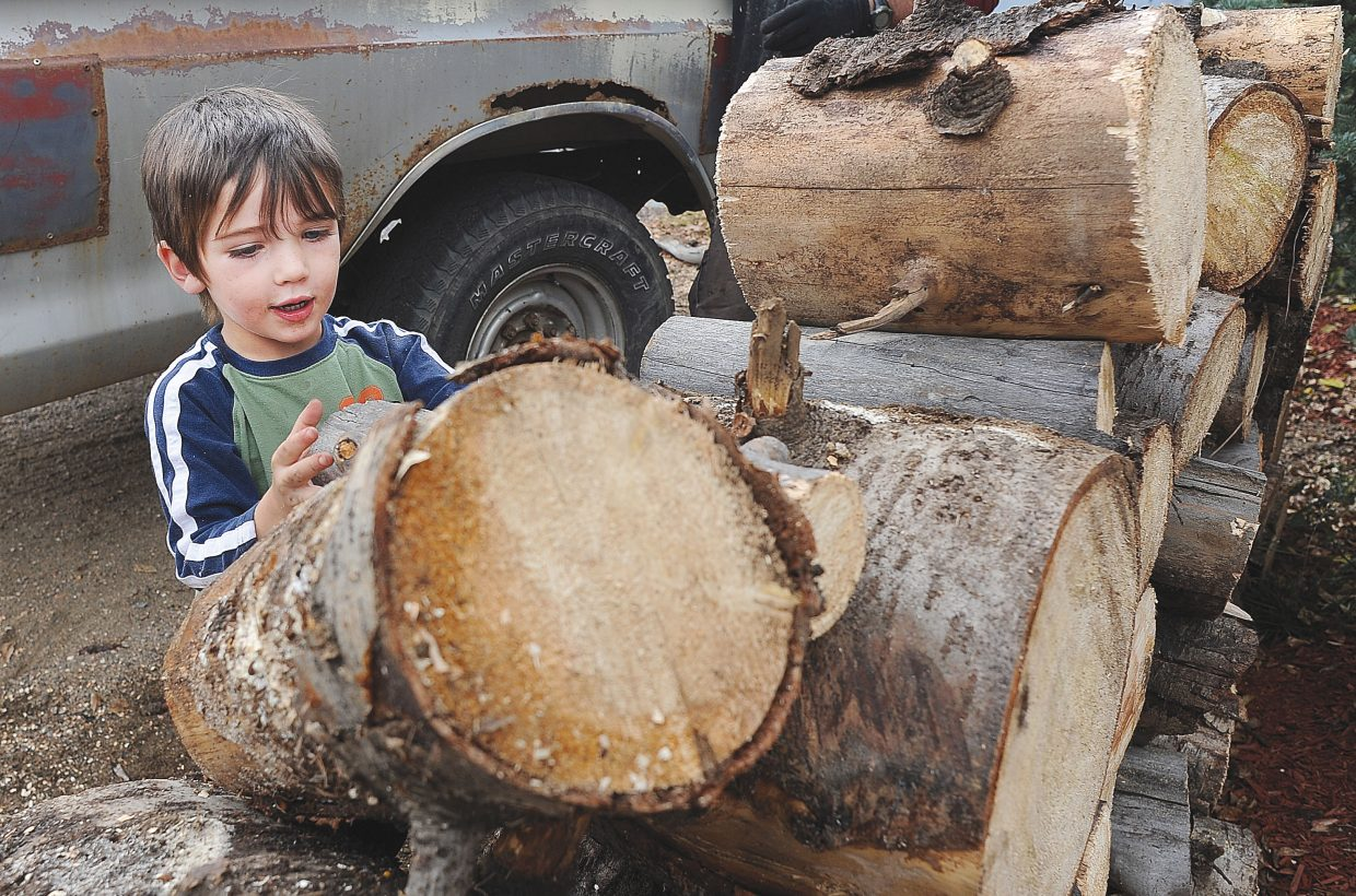 Charlie Diemer helps his dad, Mike, stack wood in front of the family's downtown Steamboat Springs home.