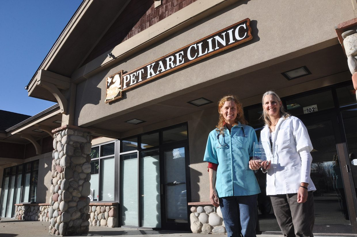 Pet Kare Clinic veterinarians Cindi Hillemeyer, left, and Susan Colfer pose with the clinic's 2014 Sustainable Business of the Year award. The clinic was lauded for its environmental efforts that include worm composting and a switch from film to digital X-rays.