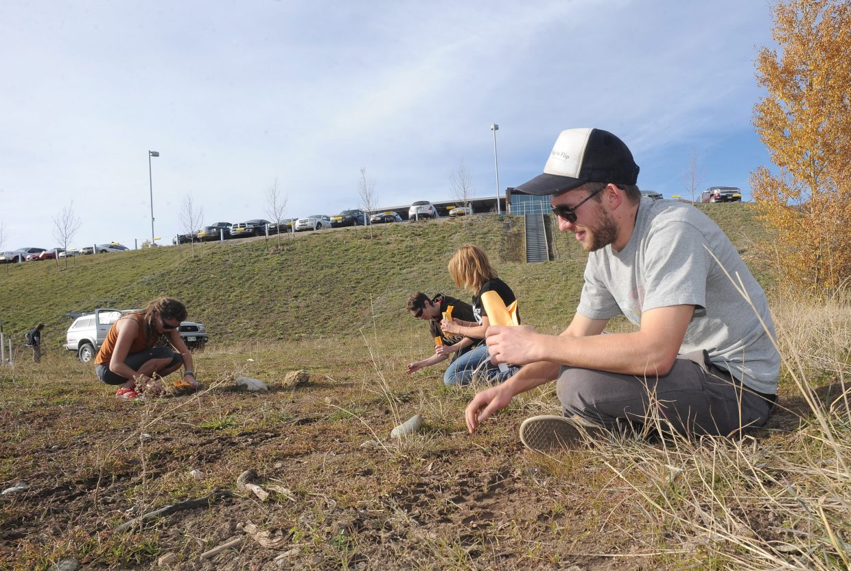 Jake McCoola, a founding member of the beekeeping club at Colorado Mountain College, plants mountain lupine and echinacea seeds on campus. The club plans to start hives in the spring and is planting the seeds to allow the bees to prosper in their new home.