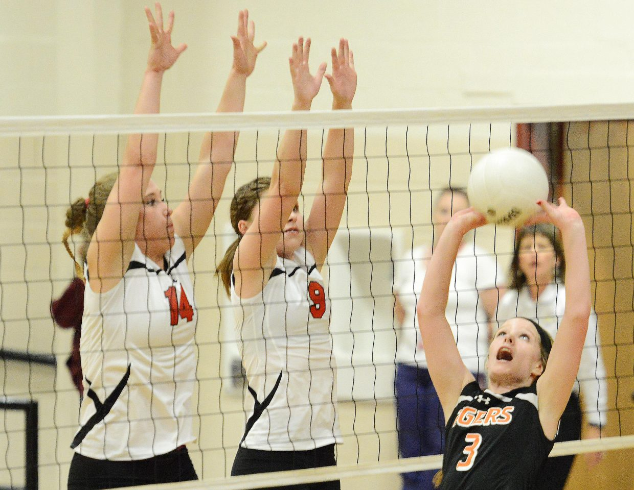 Hayden's Grace Wilkie sets the ball Friday.