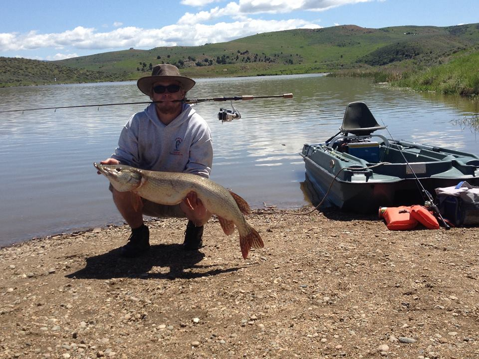 Aaron Cantrell at Elkhead Reservoir. 40.5 inches. Submitted by: Aaron Cantrell