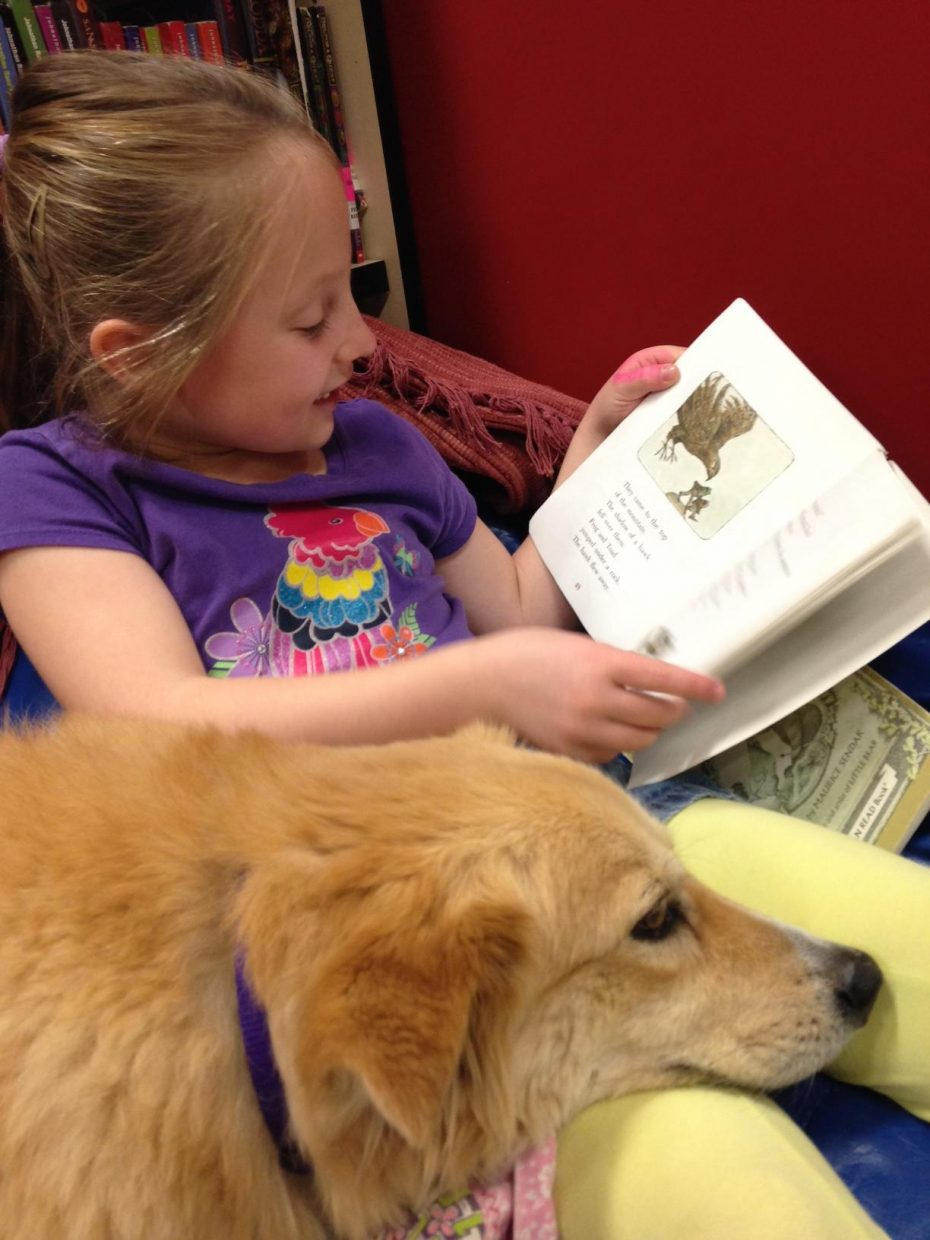 Kateau rests his head on the lap of Strawberry Park Elementary second-grader Hailey Kessler during a READ session at the school in November. Therapy animals like Kateau visit students, hospital patients and seniors as part of the Heeling Friends program.
