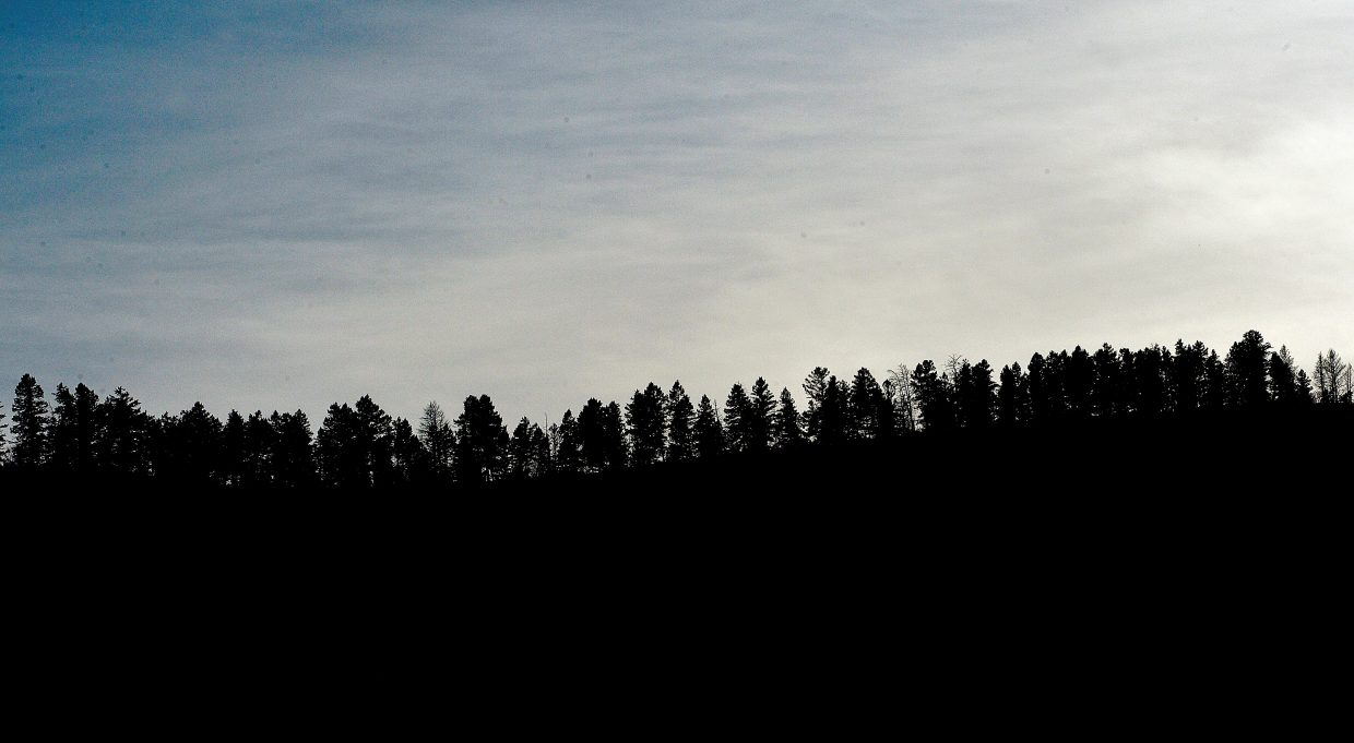 Trees west of Steamboat Springs are silhouetted against a late-afternoon sky.