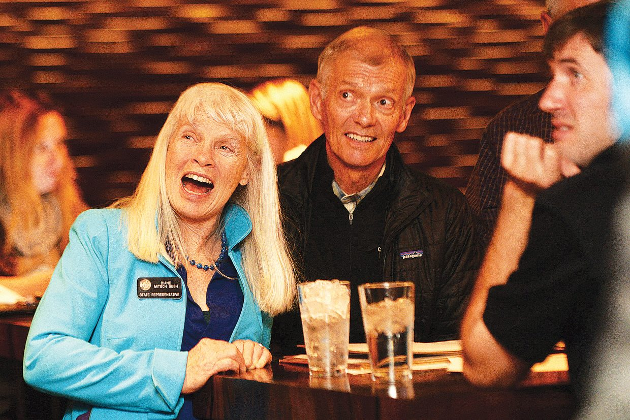 State Rep. Diane Mitsch Bush celebrates Tuesday after learning she held a lead over Republican challenger, newspaper publisher and businessman, Michael Cacioppo, of Avon.