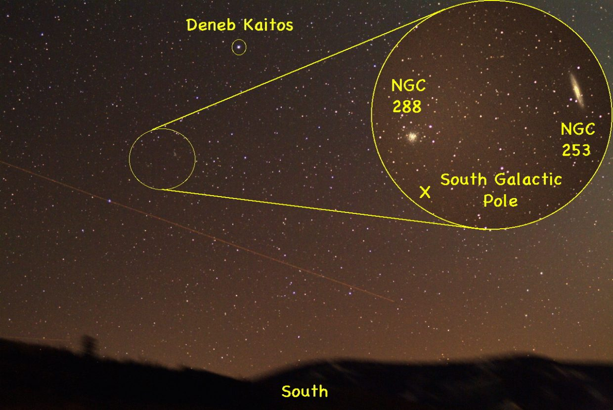 Located very close to the south galactic pole of the sky are two great binocular objects: the Silver Dollar Galaxy (NGC 253) and the globular star cluster NGC 288 (see inset). Both objects fall in the boundaries of our constellation Sculptor and can be found a little below the bright star Deneb Kaitos, in the southern sky at about 9 p.m. in mid-November.