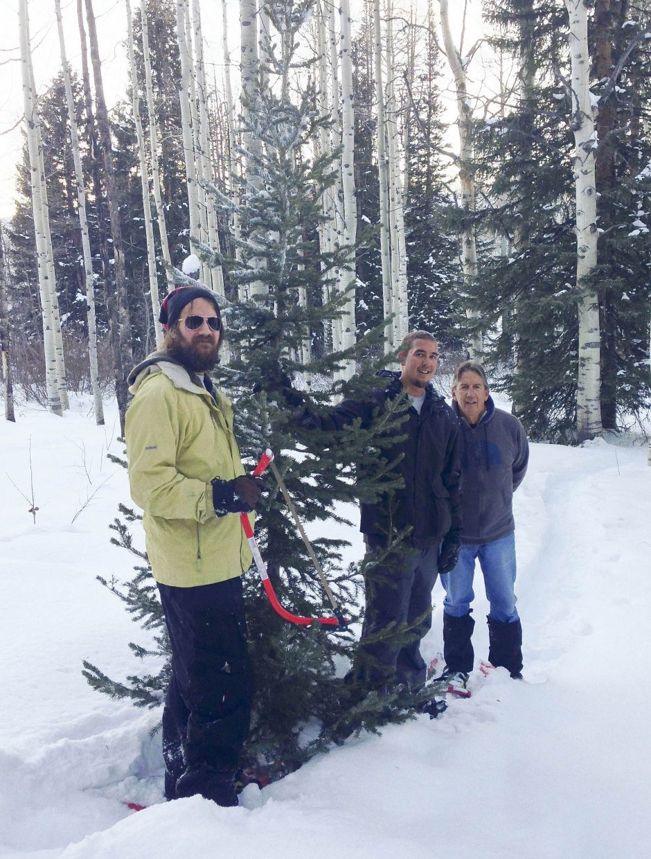 Steamboat Springs residents, from left, Andy Gilligan and Zac and Bob Riley pull out the perfect tree from the Routt National Forest.