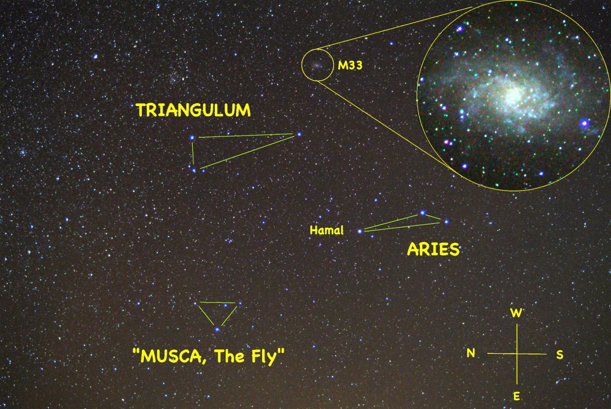 Look halfway up in the eastern sky about 7 p.m. this week to spot three triangles of stars representing Aries the Golden Ram, Triangulum the Triangle of Pythagoras and the constellation formerly known as Musca the Fly. While in the area, pull out your binoculars and explore our neighboring spiral galaxy, M33 (inset).