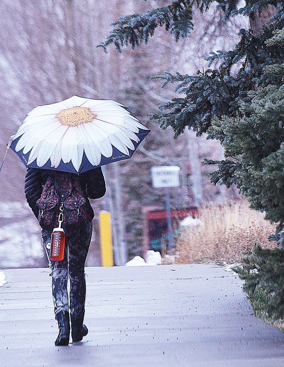 Steamboat Springs High School student Lilly Patterson's umbrella brings a little sunshine, or maybe a sunflower, into a rather gloomy day as she makes her way to school Tuesday morning.