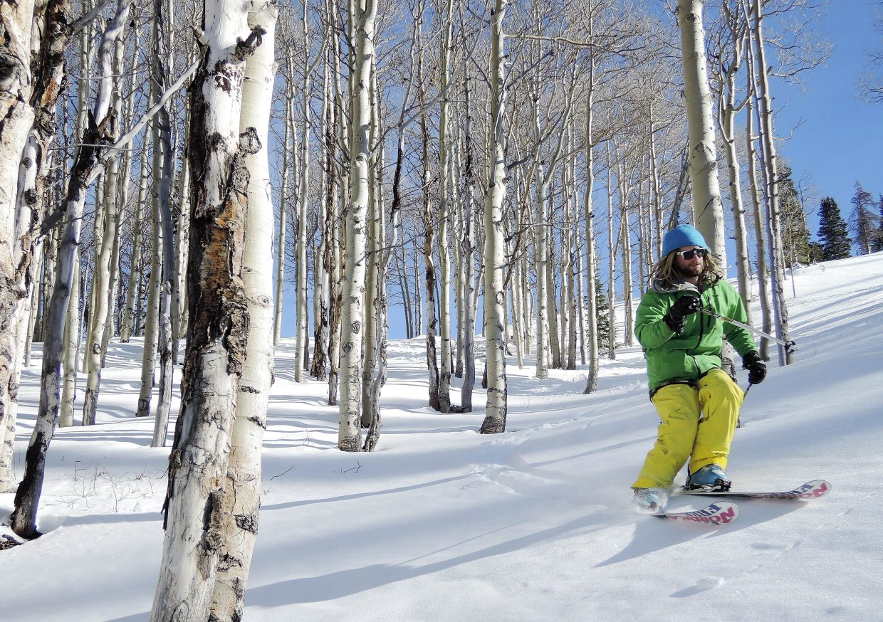 Part-time Steamboat Springs resident Kerry Lofy skis through some aspens during Scholarship Day on Wednesday at Steamboat Ski Area.