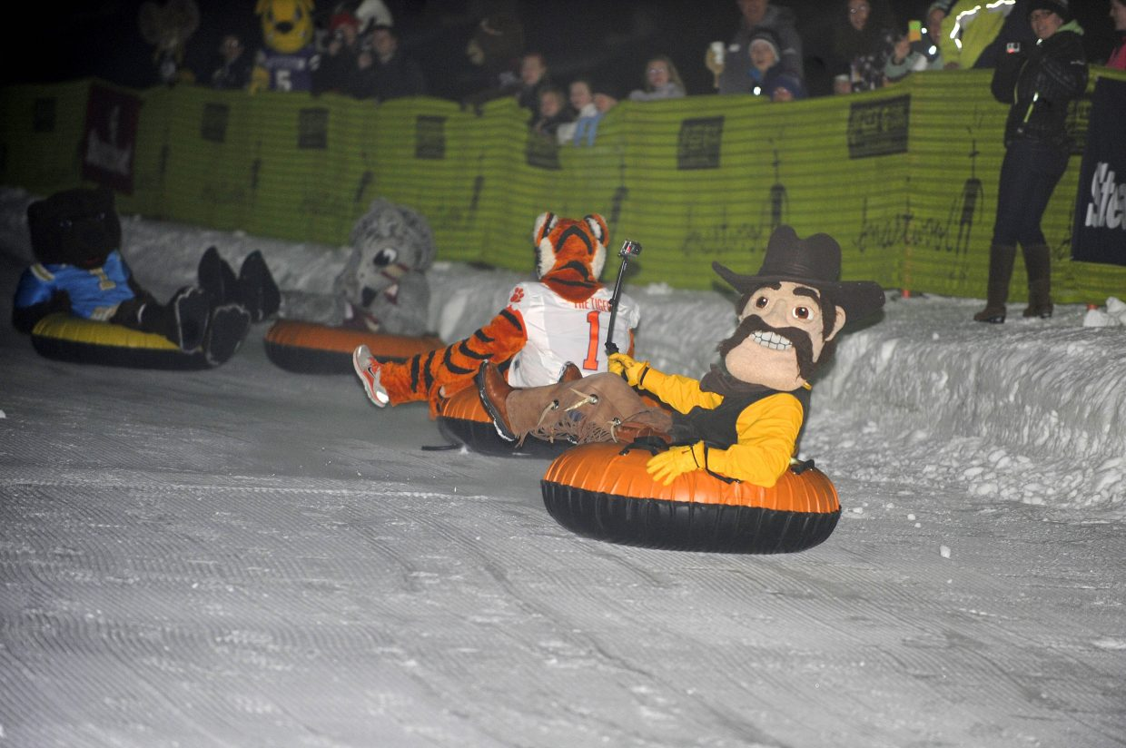 University of Wyoming mascot Pistol Pete rides down the base of Steamboat Ski Area on Friday night during the Steamboat Mascot Stampede.