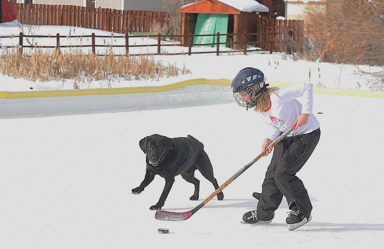Sage Zetzman plays hockey with her dog Puck Sunday afternoon at the Steamboat II ice rink.