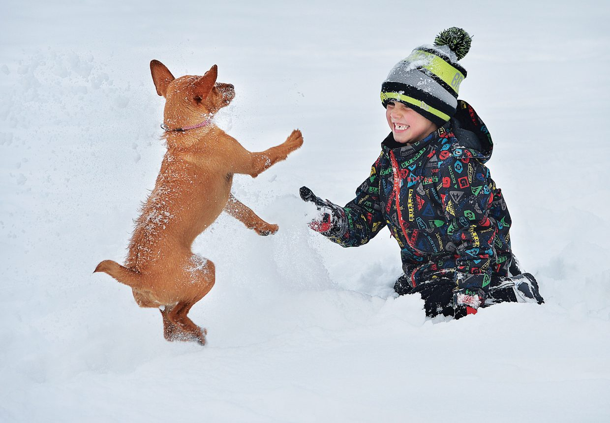 Jett Nemec plays in the snow with 9-month-old Kaida Rose, the family dog, in Little Toots Park in downtown Steamboat Springs on Tuesday.