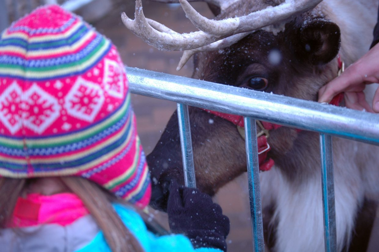 Delaney Leonard pets Blitzen the reindeer Sunday during the Season's Greetings event at Steamboat Ski Area. Tricia, Scott and Cody Flower brought their two reindeer, Blitzen and Rupert, to greet the crowd at the base area.